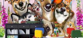Tranh 3D dán tường hình động vật cho phòng ngủ của các bé